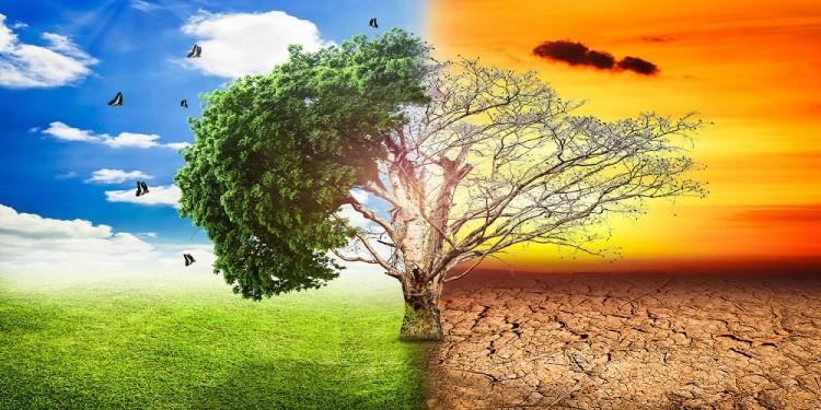 विश्वभर पाँच करोडभन्दा बढी मानिस जलवायु परिवर्तनको प्रकोपबाट प्रभावित